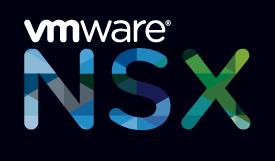NSx Logo