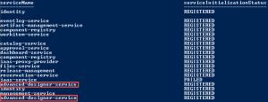 Duplicate Results